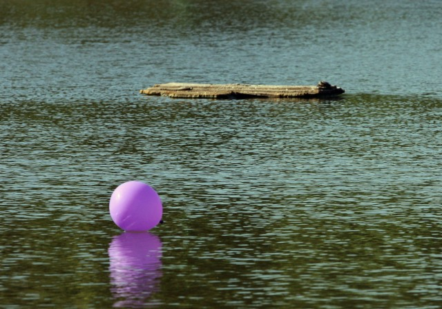 Purple Balloon @ Brea State Park