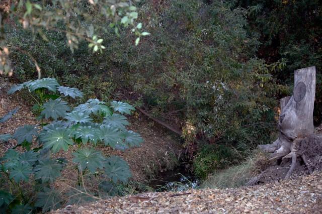 Trail Park 028ps