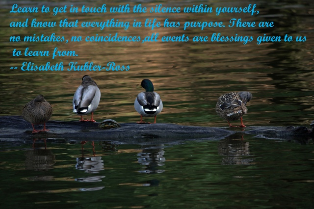 g-s-park-090-quote-ps